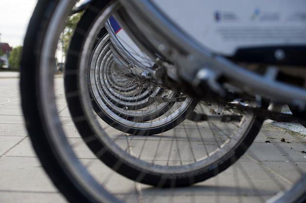 たくさんの自転車ホイール