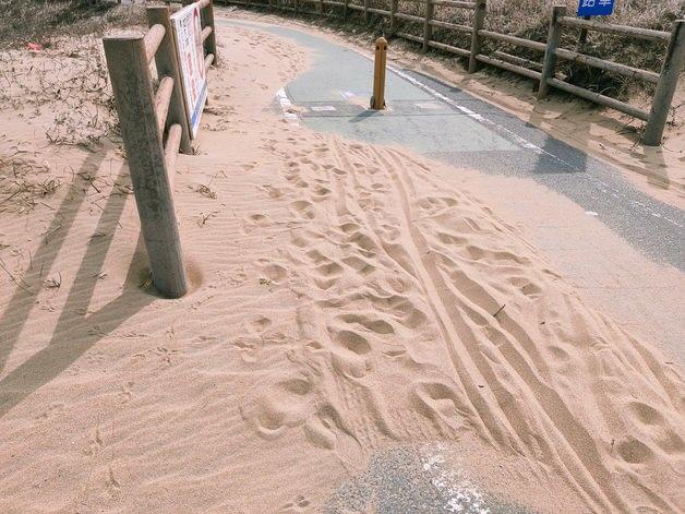 道路に浮いた砂